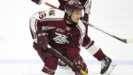 Nick Robertson of the Peterborough Petes is seen in this undated handout photo. Forward Nick Robertson started the season on fire and is showing no sign of slowing down with a league-best 19 goals in 17 games. THE CANADIAN PRESS/HO, Luke Durda, OHL Images *MANDATORY CREDIT*