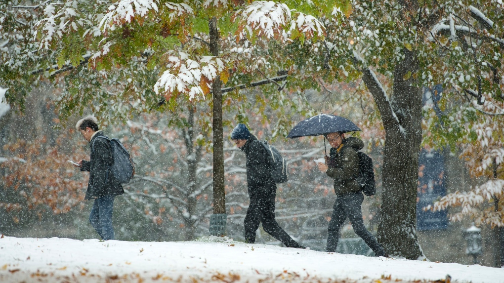 This week's record-breaking winter weather not sticking around: Environment Canada