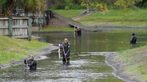 Law enforcement investigators in dry suits search the small retention pond near the entrance of the Southside Villas apartment complex off Southside Blvd. in Jacksonville, Florida Wednesday afternoon, November 6, 2019. Police in Jacksonville say Taylor Rose Williams was discovered missing from her bedroom early Wednesday. (Bob Self/The Florida Times-Union via AP) less