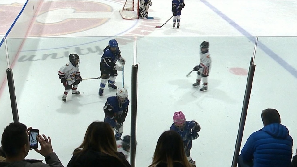 Young hockey players are pictured on the ice as their family members look on.