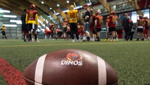 Calgary University Dinos players and coaches gather during team practice in preparation of the Vanier Cup at Laval University in Quebec City, Wednesday, Nov. 20, 2019. Quarterback Adam Sinagra (12) stands with team mates. Calgary University Dinos will play the Montreal University Carabins for the Vanier Cup on Sunday Nov. 23. THE CANADIAN PRESS/Jacques Boissinot