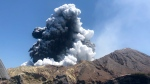 FILE - In this Monday, Dec. 9, 2019, file photo provided by Lillani Hopkins, shows the eruption of the volcano on White Island off the coast of Whakatane, New Zealand. (Lillani Hopkins via AP, file)