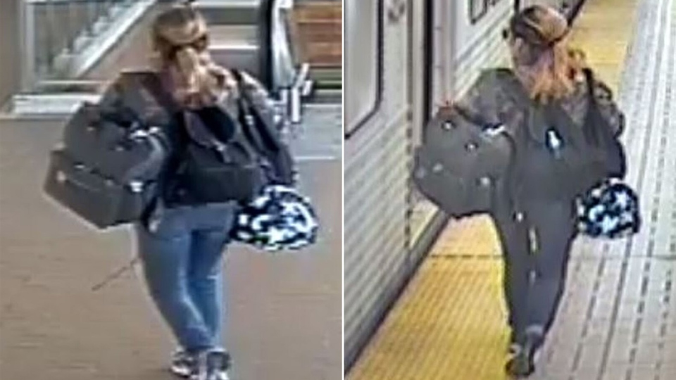 Toronto police are looking for a woman who allegedly stole a dog while another woman suffered a medical episode. (Supplied)