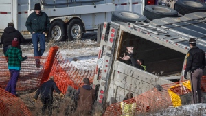 Iowa State Patrol and members of the Animal Rescue League work to move pigs from an overturned semi truck in the northbound lane of the I-80/35 Mixmaster in Des Moines, Iowa, on Thursday, Jan. 16, 2020. (Bryon Houlgrave/The Des Moines Register via AP)