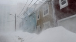 High winds and heavy snow cause white out conditions in St. John's on Friday, January 17, 2020. The City of St. John's has declared a state of emergency, ordering businesses closed and vehicles off the roads as blizzard conditions descend on the Newfoundland and Labrador capital. THE CANADIAN PRESS/Andrew Vaughan