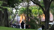 Hawaii shooting