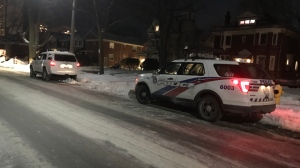 Toronto police are investigating after a young girl was struck by a vehicle in High Park.