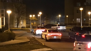 Police vehicles are seen on Acorn Place in Mississauga on Jan. 29, 2020 after a shooting incident. (Mike Nguyen/CP24)