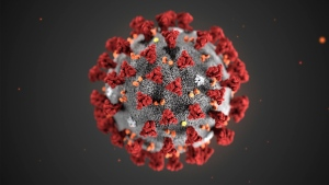 In this illustration provided by the Centers for Disease Control and Prevention (CDC) in January 2020 shows the 2019 Novel Coronavirus (2019-nCoV). THE CANADIAN PRESS/AP-CDC via AP, File