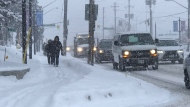 Toronto and much of the GTA are under a snow squall warning on Friday, Feb. 28, 2020. (Ted Brooks)