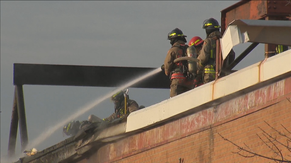 Six Toronto firefighters have tested positive for COVID-19, union president says.