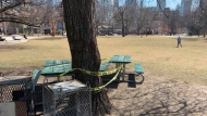 Yellow caution tape cordons off park benches to prevent people from using them in Grange Park in downtown Toronto Friday March 27, 2020. A provincial order has also all communal or shared, public or private, outdoor recreational amenities across Ontario in order to help stop the spread of COVID-19. (Joshua Freeman /CP24)