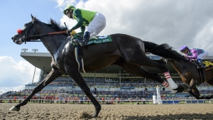 One Bad Boy, ridden by jockey Flavien Prat, wins the 160th running of the Queen's Plate in Toronto on Saturday, June 29, 2019. Woodbine Entertainment will postpone the 2020 Queen's Plate indefinitely due to the COVID-19 pandemic, a source has told The Canadian Press. THE CANADIAN PRESS/Andrew Lahodynskyj