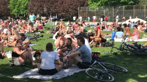 Large crowds are seen at Trinity Bellwoods Park in this file photo. (Beatrice Vaisman)