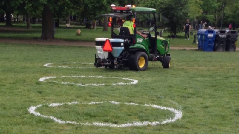 Crews are shown painting physical distancing circles at Trinity Bellwoods Park on Thursday. (Cam Woolley)