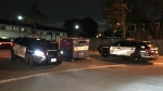 Police are investigating after shots were fired near Jane Street and Sheppard Avenue. (Michael Nguyen/ CP24)