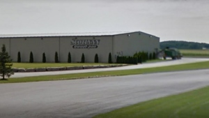 The Scotlynn Farms facility near Vittoria, Ontario in Norfolk County is shown in a Google Streetview image.