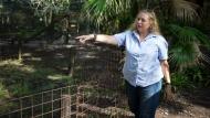 In this July 20, 2017, file photo, Carole Baskin, founder of Big Cat Rescue, walks the property near Tampa, Fla. (Loren Elliott/Tampa Bay Times via AP, File)