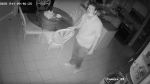 A break-in suspect is seen inside a Newmarket home on May 23, 2020 in this surveillance camera image. (Handout /York Regional Police)