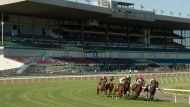 Riders and their horses race around the first turn during the ninth race on opening day at Woodbine Racetrack in Toronto on Saturday, June 6, 2020. The 2020 thoroughbred campaign finally started with no fans in attendance due to the COVID-19 pandemic. THE CANADIAN PRESS/HO-Michael Burns MANDATORY CREDIT