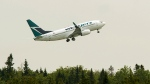 A WestJet flight departs Halifax Stanfield International Airport in Enfield, N.S., on Thursday, July 2, 2015. THE CANADIAN PRESS/Andrew Vaughan