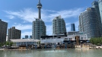 The Toronto skyline is pictured from the waterfront. (Joshua Freeman /CP24)