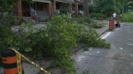 storm, damage