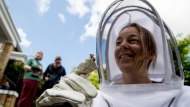 Neighbors hesitantly take a closer look at a bee that rests on beekeeper Erin Gleeson's glove after she helped capture a swarm of honey bees to relocate them to a bee hive, Friday, May 1, 2020, in Washington. (AP Photo/Andrew Harnik)