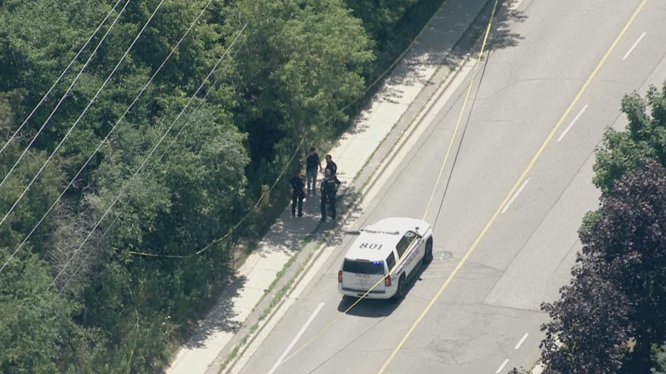 A woman has life-threatening injuries after going missing and then assaulted in Whitby near a creek.