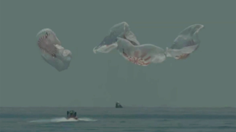 In this frame grab from NASA TV, the SpaceX capsule splashes down Sunday, Aug. 2, 2020 in the Gulf of Mexico. Astronauts Doug Hurley and Bob Behnken spent a little over two months on the International Space Station. It will mark the first splashdown in 45 years for NASA astronauts and the first time a private company has ferried people from orbit. (NASA TV via AP)
