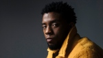 "In this Feb. 14, 2018 photo, actor Chadwick Boseman poses for a portrait in New York to promote his film, ""Black Panther."" (Photo by Victoria Will/Invision/AP, File)"