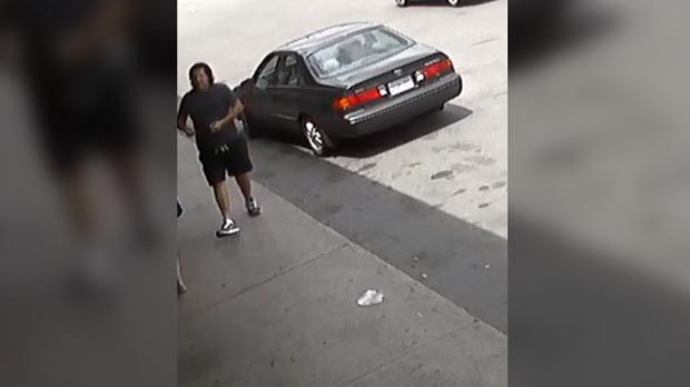 Mississauga hit-and-run suspect