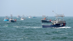 Non-indigenous boats protest the launch of a Mi'kmaq self-regulated fishery by members of the Sipekne'katik First Nation, in Saulnierville, N.S., on Thursday, Sept. 17, 2020. An official with Nova Scotia's Sipekne'katik First Nation is reporting no significant incidents as band fishermen prepare to haul lobster traps today in the western part of the province.THE CANADIAN PRESS/Andrew Vaughan
