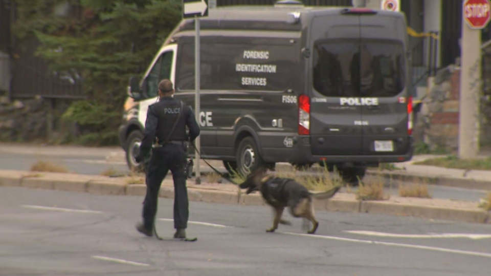 Toronto police's canine unit at the scene of a shooting near Queen Street and  Broadview Avenue on Sunday morning. A woman is in hospital after being shot twice, police say.