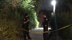 Toronto police are conducting an investigation into the shooting death of a man in north Etobicoke. (CP24/Beatrice Vaisman)