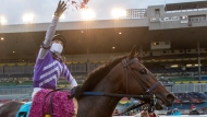Jockey Luis Contreras celebrates by throwing flowers aboard Belichick after winning the Breeders' Stakes at Woodbine Racetrack in Toronto on Saturday October 24, 2020. THE CANADIAN PRESS/Frank Gunn