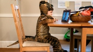 "Dressed in his dinosaur Halloween costume, Martin, 4, attends a class Zoom for his public school prekindergarten class, Friday, Oct. 30, 2020, in Washington. Martin chose to be a ""deinonychus"" for Halloween, and wore the costume in celebration the day before the holiday. (AP Photo/Jacquelyn Martin)"
