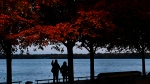 People are silhouette as they walk holding hands along the board walk on a fall evening overlooking Lake Ontario during the COVID-19 pandemic in Toronto on Wednesday, October 21, 2020. THE CANADIAN PRESS/Nathan Denette