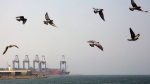 Seagulls fly over the Red Sea port city of Jiddah, Saudi Arabia, Friday, Oct. 11, 2019. (AP Photo/Amr Nabil)