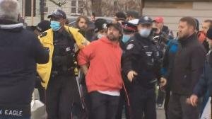 Adamson Arrest