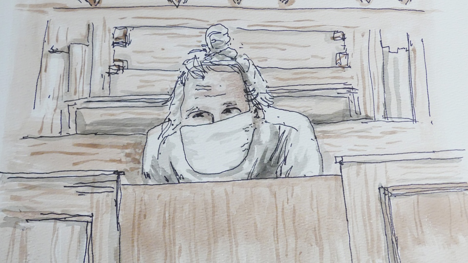 Canadian fashion mogul Peter Nygard appears in front of a judge in court in Winnipeg on Tuesday, Dec. 15, 2020, in this court sketch. THE CANADIAN PRESS/James Culleton