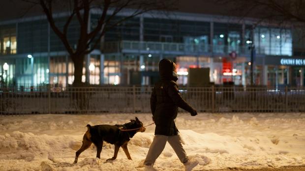 Dog curfew quebec