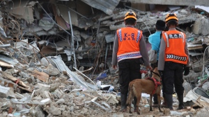 Rescuers leading a sniffer dog pause during a search operation at the ruins of a building collapsed in Friday's earthquake in Mamuju, West Sulawesi, Indonesia, Monday, Jan. 18, 2021. Aid was reaching the thousands of people left homeless and struggling after the earthquake that killed a number of people in the province where rescuers intensified their work Monday to find those buried in the rubble. (AP Photo/Joshua Marunduh)