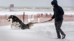 A man and his dog make their way through snow drifts during a winter storm n Toronto on Tuesday January 26, 2021. THE CANADIAN PRESS/Frank Gunn