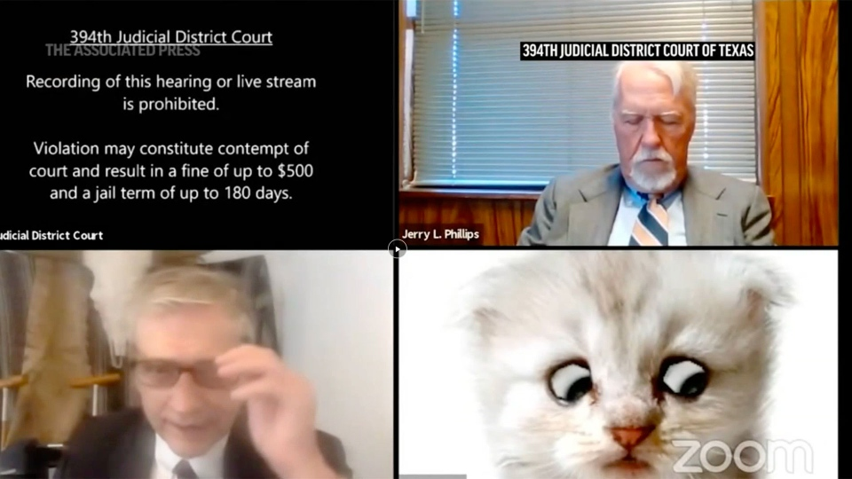 A Zoom court hearing in Texas took a detour when an attorney showed up looking like a kitten. That's because of a Zoom filter that had been activated on the attorney's device, which obscured his appearance and made him look like a cat. (Feb. 9)