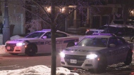 Peel police are investigating after a man was shot in Brampton early Thursday morning.