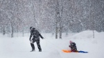 A woman pulls a child on a sled as snow falls in Montreal, Saturday, February 27, 2021, as the COVID-19 pandemic continues in Canada and around the world. THE CANADIAN PRESS/Graham Hughes