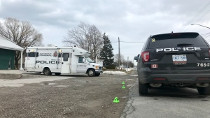 Police vehicles are shown at the scene of a homicide investigation on Arvin Avenue in Hamilton on Monday morning. (Francis Gibbs)