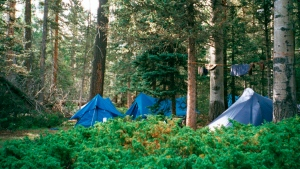 A backcountry campsite is pictured in this 2010 file photo. (The Canadian Press)