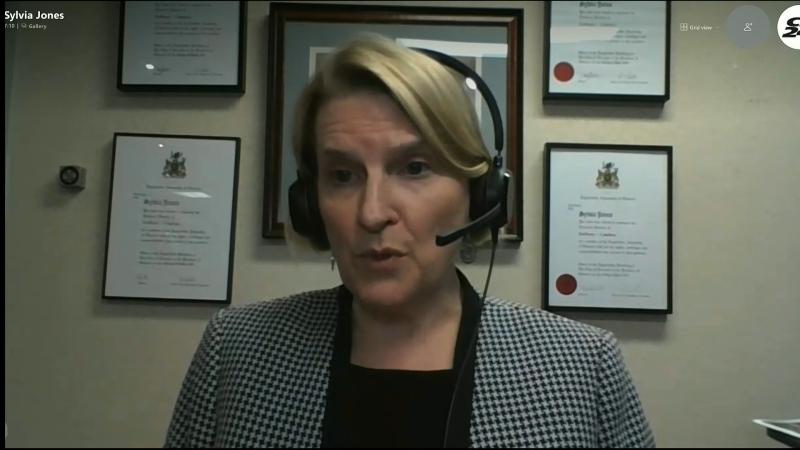 Solicitor General Sylvia Jones